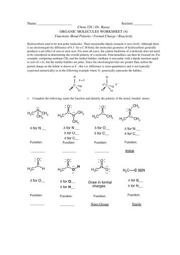 biology 12 biologically important molecules review worksheet
