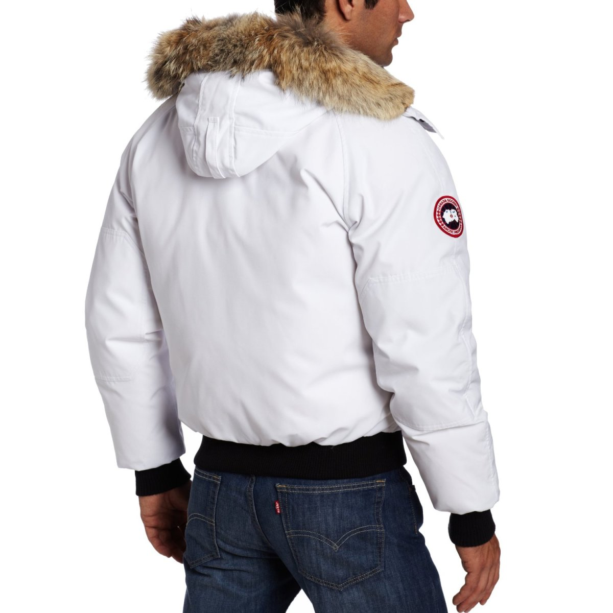 canada goose chilliwack bomber review